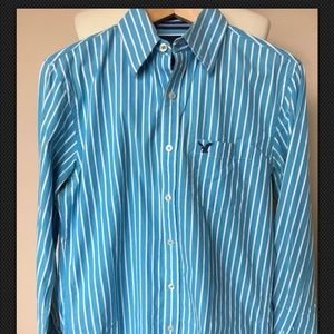 American Eagle Mens Shirt Vintage Fit Teal Stripe
